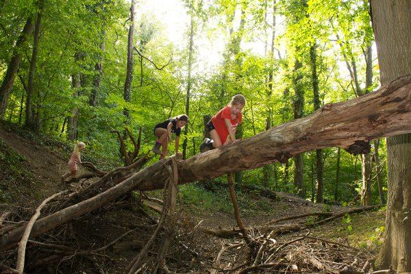 Spelen in bos rondom De Verlorenkost Gulpen Zuidlimburg